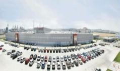 Bursa Plant